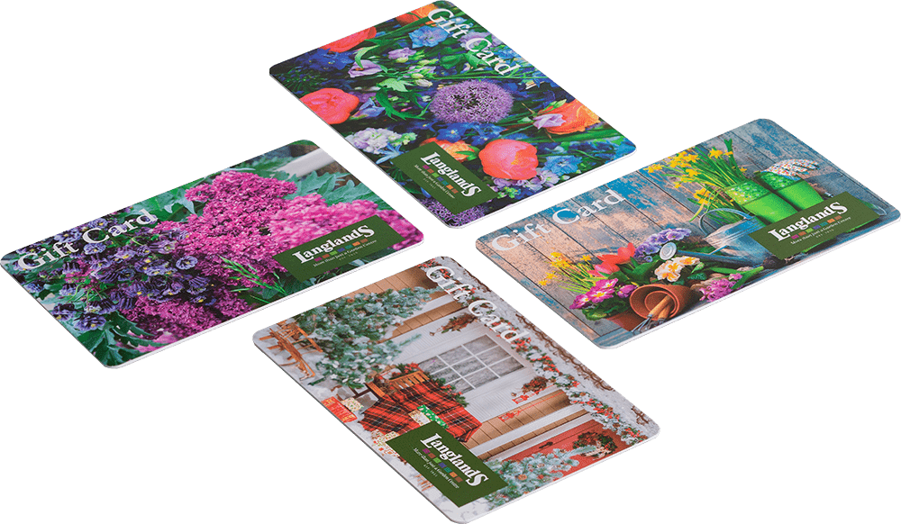 Eco Friendly Recycled Plastic Cards